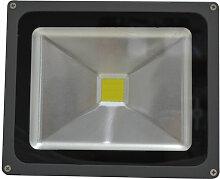 Projecteur extérieur LED IP65 30W Noir