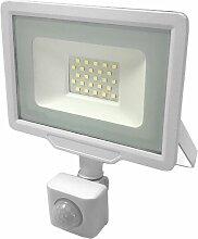 Projecteur LED Extérieur 30W IP65 BLANC avec