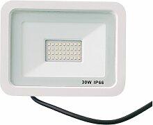 Projecteur LED Extérieur 30W IP66 BLANC - Blanc