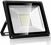 Projecteur LED exterieur Horypt LUX 50W Lampadaire