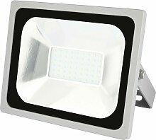 Projecteur LED extérieur Profi 850EMPR30WZS2630