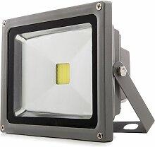 Projecteur LED IP65 30W 2550Lm 12-24VDC | Blanc