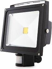 Projecteur LED IP65 Détecteur De Mouvement 30W