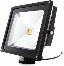 Projecteur LED IP65 Détecteur De Mouvement 50W