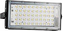 Projecteur LED Réverbère de LED 50W 110V