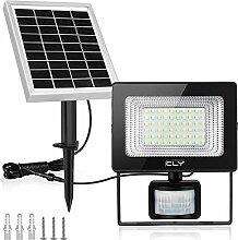 Projecteur LED Solaire Avec Détecteur, CLY 60 LED