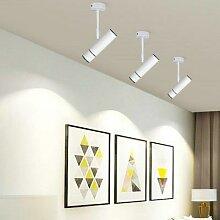 Projecteur LED sur Rail, 2 fils, 1phase, 15W,