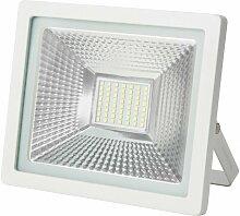 Projecteur LED WAVE - 30W - IP65 Blanc Pur -