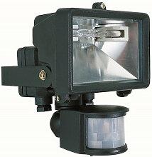 Projecteur noir détecteur de mouvement