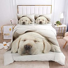 QDoodePoyer Parure de lit double 3 pièces avec