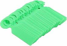 Raguso 100 pcs Plante Arbre étiquettes en