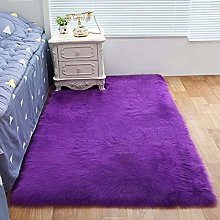 RAILONCH Shaggy Living Room Carpet Tapis en