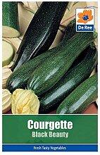 Ree Courgette Beauté Noire Légumes / Plante