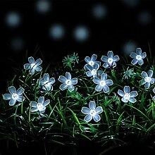 REWD Guirlande Lumineuse Solaire Exterieure Fleur