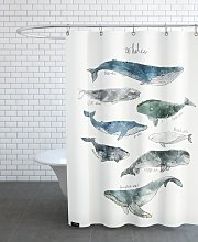 Rideau de douche en polyester en Blanc ivoire &