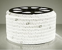 Ruban LED professionnel 50 mètres en 2835 blanc