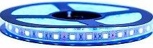 Ruban LED Professionnel 5050 / 60 LED 5 mètres