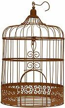 SANTEX 3871-41, Tirelire Cage métal, coloris