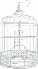 Santex 3871 Tirelire Cage, Blanc