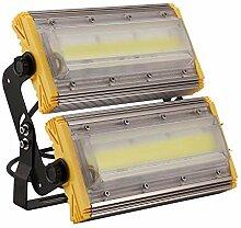Sararoom Projecteur LED 100W, IP67 Imperméable,