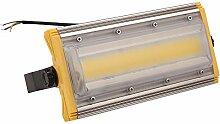 Sararoom Projecteur LED 50W, IP67 Imperméable,