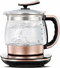 SCDZS Électrique Teapot santé Pot Multifonction