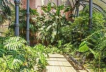 Scenolia Tapisserie Toile Textile Jardin Tropical