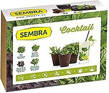 Sembra - Kit à Faire Pousse - Cocktail
