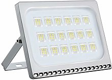 Shinning-star Projecteur LED 30W blanc froid