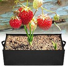 SHYEKYO Sac de fraisier, Sac de Plante de légumes