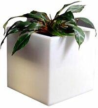 SLIDE vase lumineux Q-POT LIGHT (Blanc -
