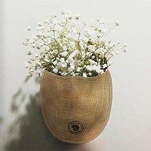 SnailGarden 1 Pot de Fleurs Mural Suspendu pour