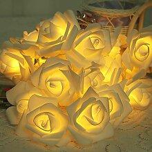 SOEKAVIA Lumineuse Rose 3M 20 LED À Piles de