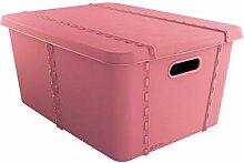 SP Berner - Boîte de Rangement Plastique avec