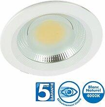 Spot Downlight Pro Fixe Cob 15W 4000k Garantie 5