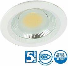 Spot Downlight Pro Fixe COB 25W 4000k Garantie 5
