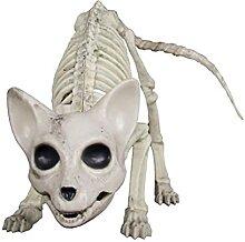 Squelette d'Halloween pour décoration