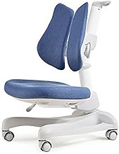 SuDeLLong Chaise de Bureau Enfant Chaise pour