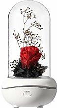 Sunbaby L Éternite Rose Parfum La Couleur Led