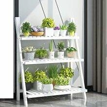 Support Porte-plantes Escalier Étagère à fleurs