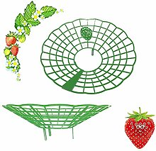 Sursflog Support pour fraises sur le balcon -