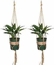 Suspension Corde Pot De Fleurs Porte-Plantes Pour