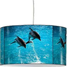 Suspension dauphins