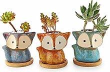 T4U 10CM Petit Cache Pots pour Cactus avec Plateau