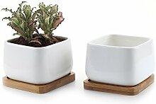 T4U 10cm Pot de Succulent en Céramique avec