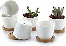 T4U 6.5CM Pot de Succulent en Céramique Blanc