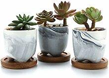 T4U 6CM Pot de Succulent en Céramique Gris avec