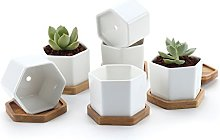 T4U 7CM Pot de Succulent en Céramique Hexagone
