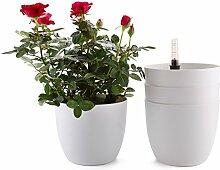 T4U Bac à Fleurs Auto-Irrigation Blanc 18.5 16cm