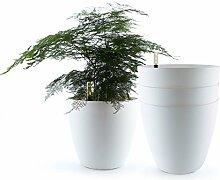 T4U d'arrosage Automatique Pots de Fleurs, 22